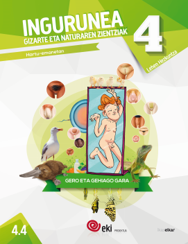 4.4 Ingurunea